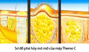 pha-huy-mo-mo
